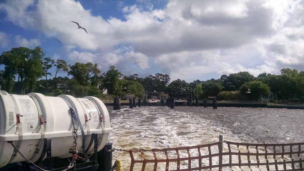 Seagulls chasing ferry