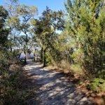 Gravel Path on Tideland National Recreation Trail